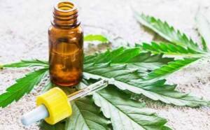 Cannabis thérapeutique, rétablir la Vérité