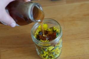 Miel infusé aux pissenlits