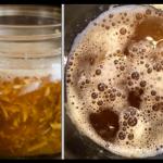 Gingembre fermenté au miel
