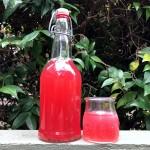 Limonade pétillante (fermentée) à la Fleur d'Hibiscus