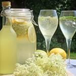 Limonade pétillante (fermentée) aux fleurs de sureau