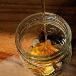 Miel infusé à la racine de pissenlit : booster d'immunité