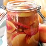 Probiotique de Pommes à la Cannelle de Ceylan