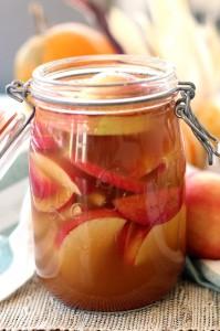 Pommes probiotiques à la cannelle