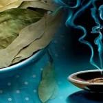 Consumer des feuilles de laurier contre l'anxiété