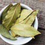 8 remèdes naturels éprouvés avec les feuilles de laurier